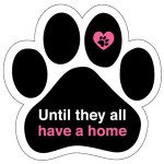 until they all have a home