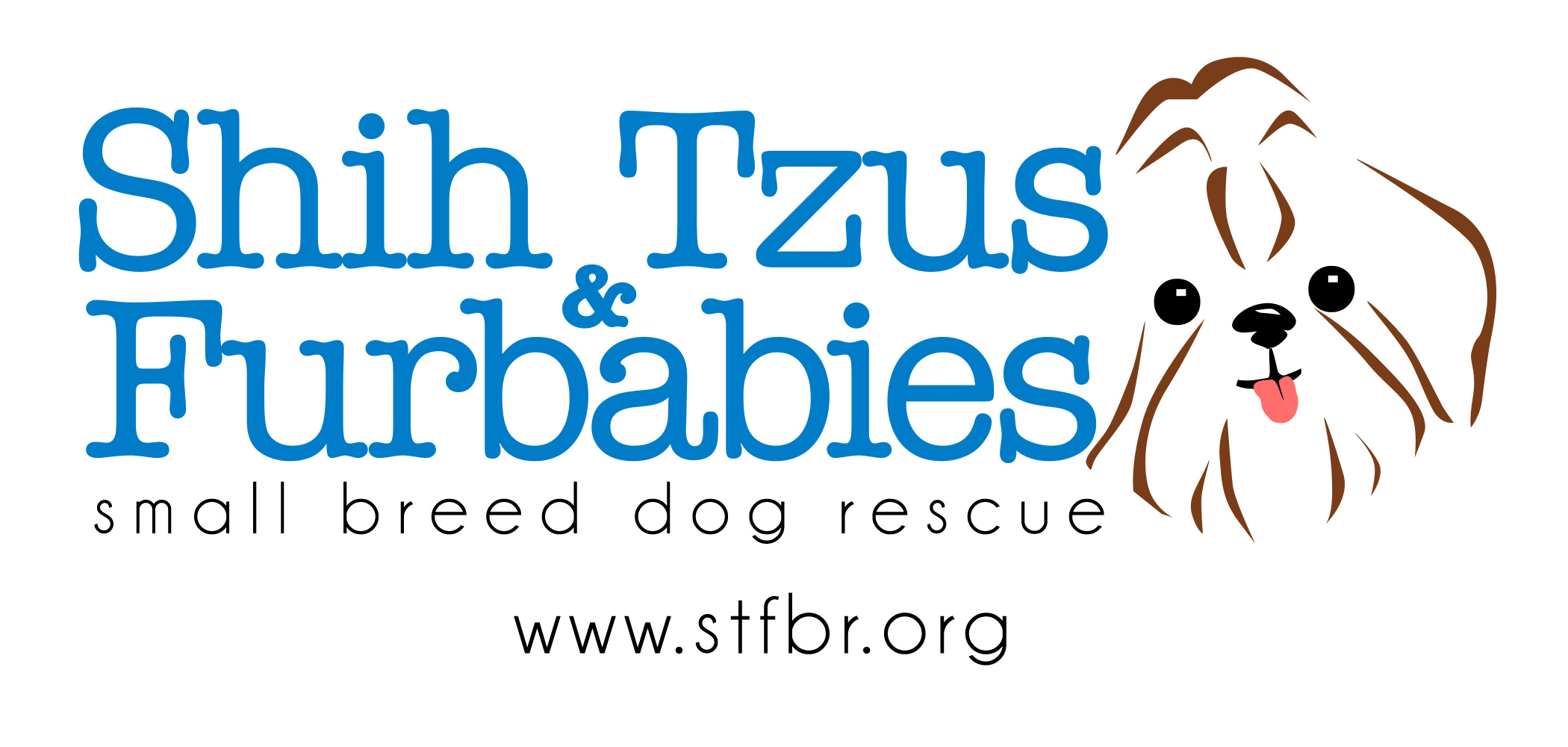 Welcome to STFBR rescue homepage - Shih Tzus & FurbabiesShih